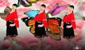 广场舞玛尼情歌背面_英红梅广场舞《酒醉的蝴蝶》网红 演示和分解动作教学 编舞英 ...